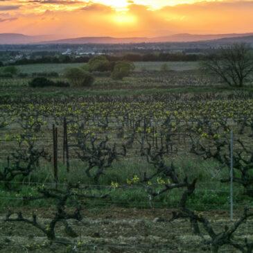 Couleur Provence : Séguret, Gigondas, Vaison la romaine et Brantes