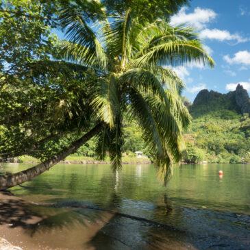 Ia orana : Tahiti 2016