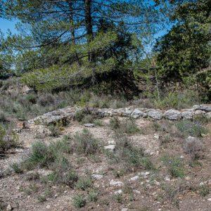 oppidum gaulois