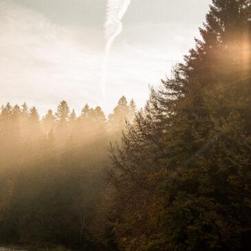 instant d'automne au lac Genin